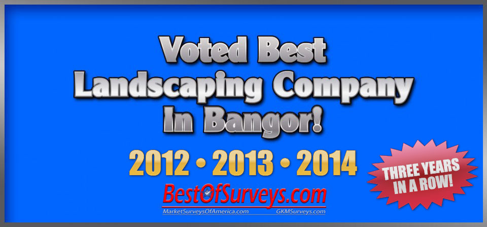Best Of Bangor – THREE YEARS IN A ROW!